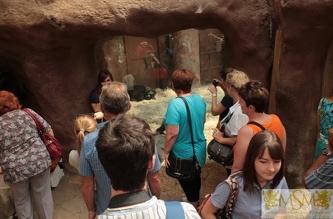 Экскурсия в Зоопарк - июль 2013